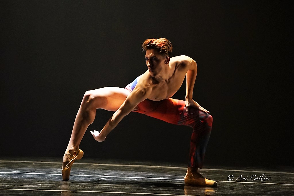 Complexions Contemporary Ballet in Star Dust