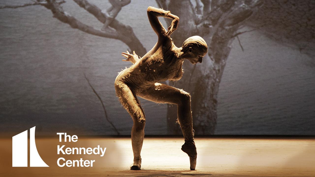 Companhia de Dança Deborah Colker: Dog Without Feathers (Cão Sem Plumas)