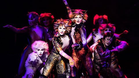 Cats , The John F. Kennedy Center for the Performing Arts