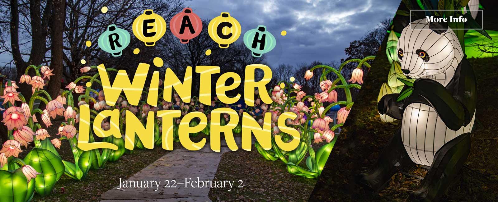 REACH Winter Lanterns