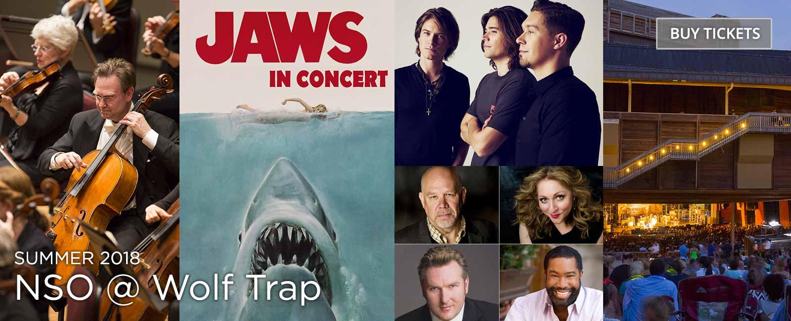 NSO @ Wolf Trap